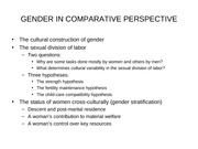 102-16 GENDER IN COMPARATIVE PERSPECTIVE