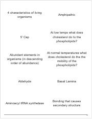 Print › SLU Biology 104 Final _ Quizlet.pdf
