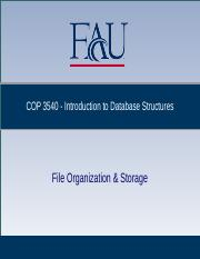 COP3540_08.File Organization & Storage.pptx