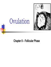 Lecture+12+Ovulation+3-3-2015