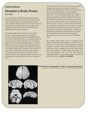 Enstein's Brain-Science News-1999
