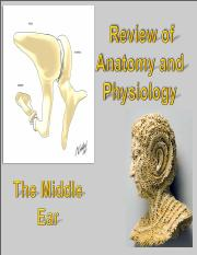 04 483 Anat &Phys Middle Ear S16