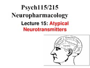 Lecture 15 - Atypical Neurotransmitters