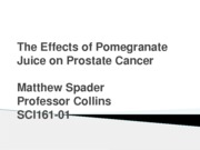 PowerPoint for Annotated Bibliography