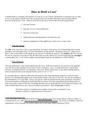 clp_case_brief_explanation.docx
