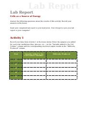lab_report_cell_energy (1) (1).doc