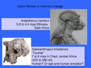 HominidLineageReview 2010