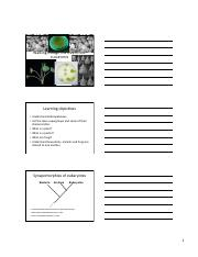 Lecture Outline EvoGreenGroups.pdf