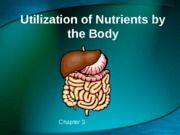 3_Utilization of Nutrients_2013
