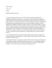 A Connell Tarea 2-24 SP 560.docx