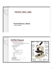 Midterm review Micro Lab