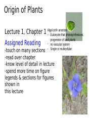 Lecture%201-Origins%20of%20Plants-ave.pptx