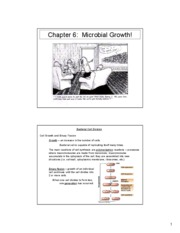 CE555 - Chapter 6 - Lecture Notes + disinfection [Compatibility Mode]