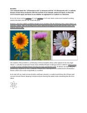 I am confused about the numbers of flower parts (1)