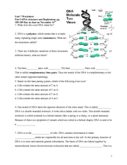 283 Free Resume Templates in Microsoft Word dna replication essay ...