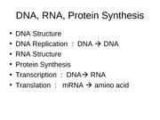 4-protein_synthesis