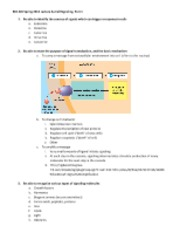 5-16-13  Signal transduction Lecture 4b Student notes