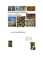 Ent10+Insect+Societies
