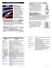 Biology 12 Circulatory System Study Guide