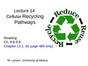 Lec 14_Recycling Pathways_2015-S