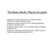 nose, mouth, pharynx & layrnx