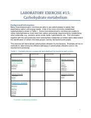Lab 15 Carbohydrate metabolism.pdf