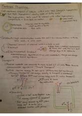 Membrane Physiology