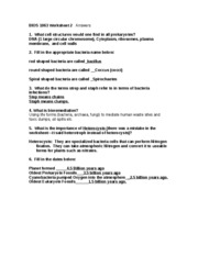 worksheet 2 prokaryotes and protists answers bios 1063 worksheet 2. Black Bedroom Furniture Sets. Home Design Ideas