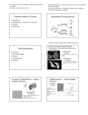 Chapter 28 - Protists