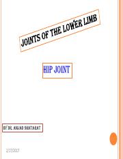 9hip_and_ankle_joints