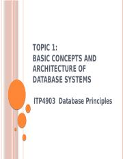 Topic 1 - Basic Concepts and Architecture of Database Systems v4