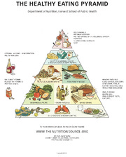 Harvard Healthy Eating Pyramid