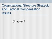 ch 4_Strategic and Tactical Compensation Issues