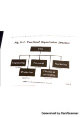 World of Business Functional Organizational Structure