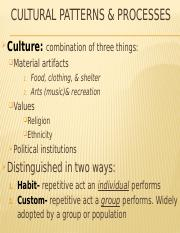 Topic 3 Cultural Patterns & Processes.pptx