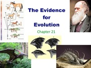 Chapter 21 The Evidence for Evolution PDF