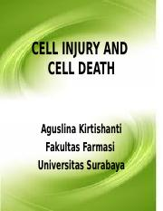 PATOFISIOLOGI CELL INJURY 2011.ppt