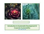Future of Corporate Sustainability-2013