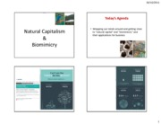 Lesson 14 SLIDES_Biomimicry and Natural Capitalism