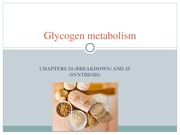 Metabolism Ch 24 and 25