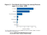 Past Month Illicit Drug Use among Persons Aged 12 or Older 2009