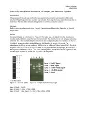 Data Analysis for Plasmid Purification