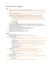 Study guide-2 Spring 2013