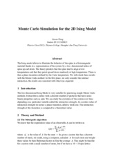 Monte Carlo Simulation for the 2D Ising Model——王思远