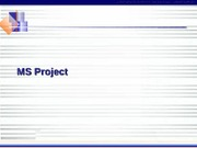 36819634-MS-Project