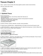 Tissues Notes.pdf