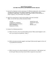 Antibiotic action activity review sheet.docx