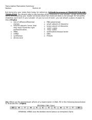 transcription_and_translation_worksheet_F17.docx