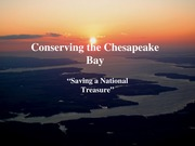 Conserving the Chesapeake Bay