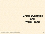 groupdynamicsworkteams (3)
